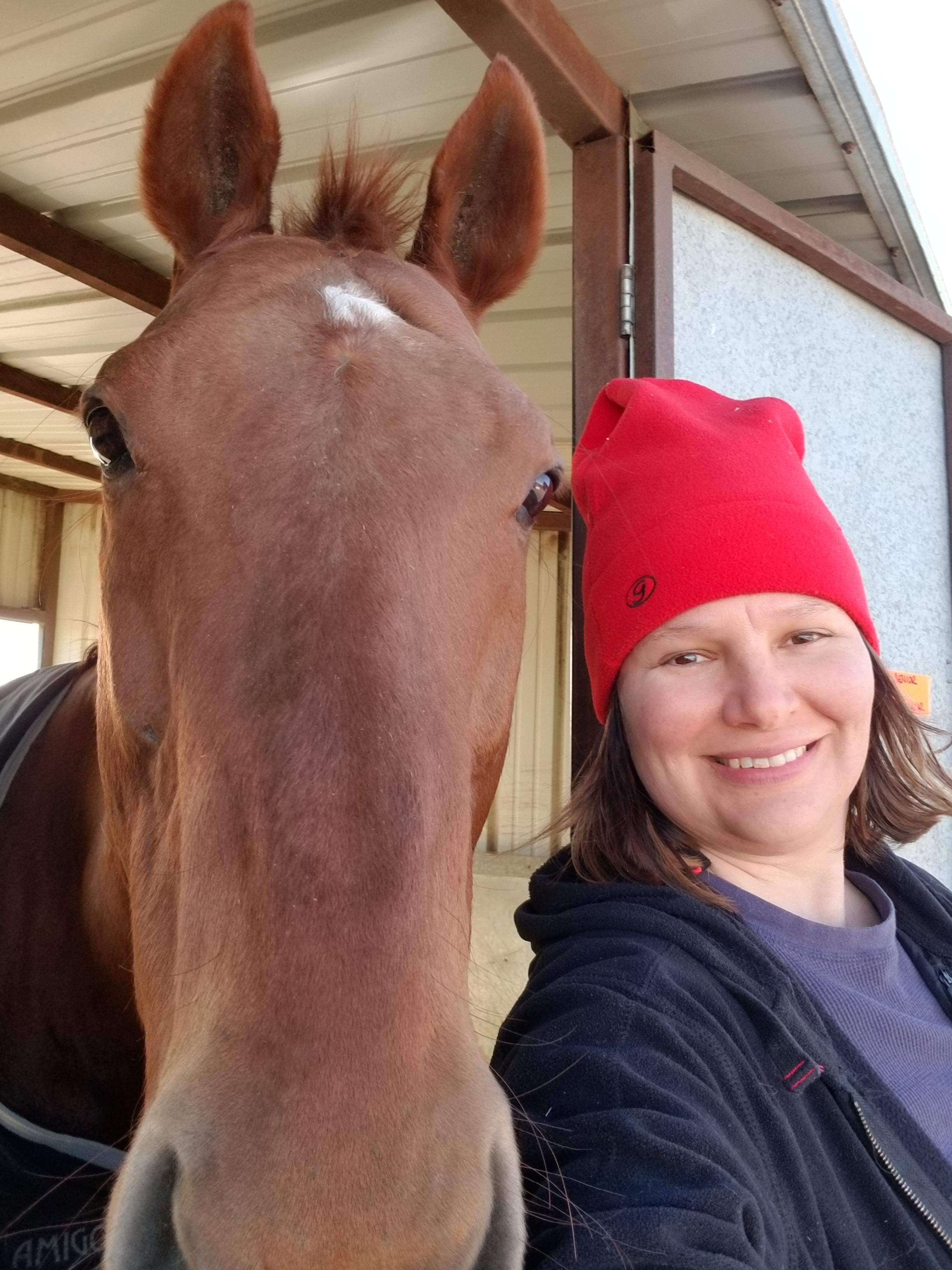 Owner: Nicole Bessey  Career/Styles: Racehorse, Dressage, Trail Riding