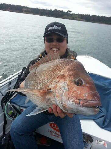 selfdrive snapper fishing charter boat hire mornington peninsula melbourne